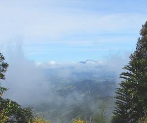 beautiful, landscape, and mist image