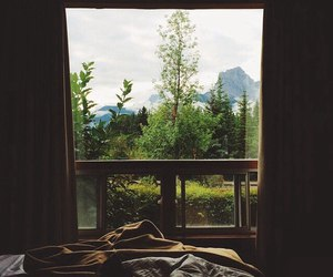 bed forest home wow image