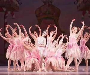 arts, ballerina, and ballet image