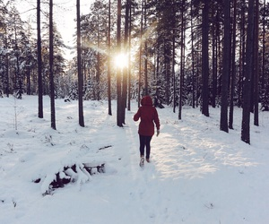 forrest, girl, and snow image