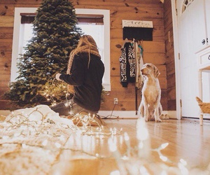 dog, girl, and holiday image