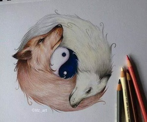 draw, wolf, and wolves image