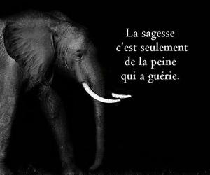 francais, peine, and sagesse image