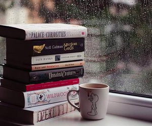 book, rain, and winter image