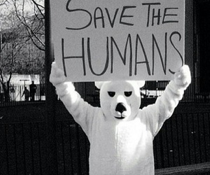 humans, bear, and save image
