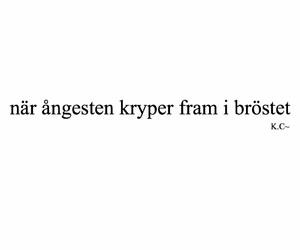 quotes, svenska, and swedish image