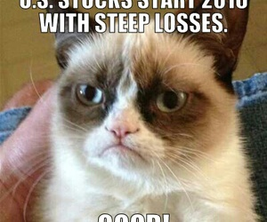 funny, quotes, and grumpy cat image