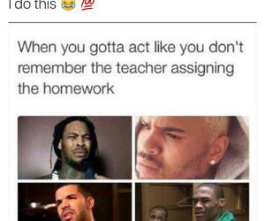 funny, lol, and homework image