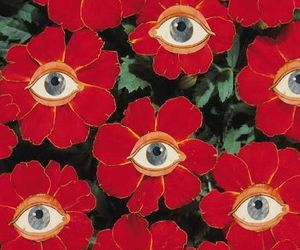 eyes, flowers, and forest image