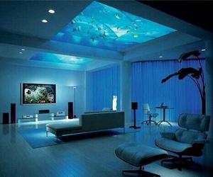 blue, room, and aquarium image