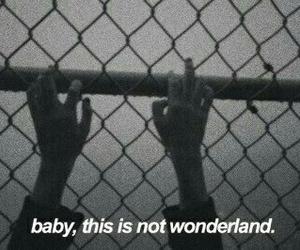 wonderland, grunge, and quotes image