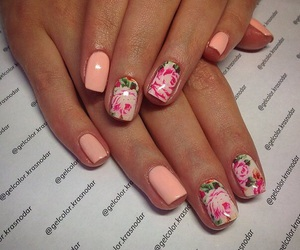nails, rose, and manicures image