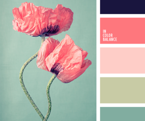 color palette, flower, and pale image