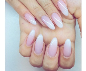 french, long, and nails image