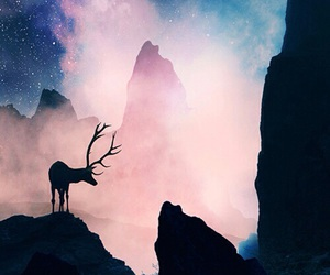 deer, galaxy, and sky image