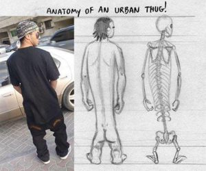 anatomy, funny, and thug image