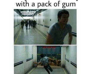 funny, tumblr, and teen wolf image