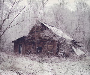 house, forest, and winter image