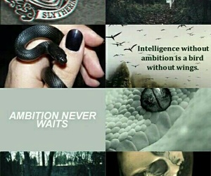 harry potter, slytherin, and snake image