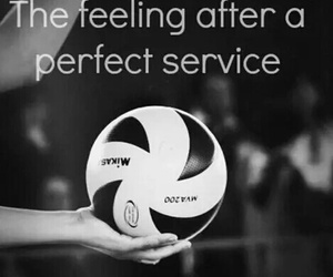 volleyball and service image