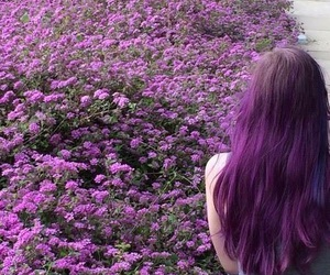 hair, purple, and flowers image