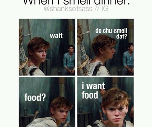 funny, food, and newt image