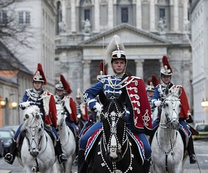 black, horse, and guard image