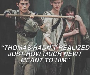 newt, thomas, and newtmas image