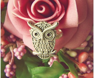 flower, owl, and rose image