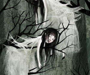 forest, girl, and illustration image