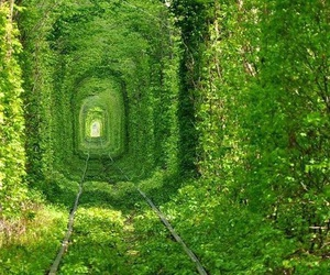 green, landscape, and train image