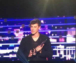 pcas and shawn mendes image