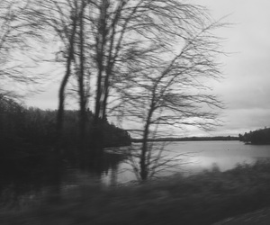 black and white, blurry, and cottage image