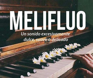 melifluo, words, and sonido image