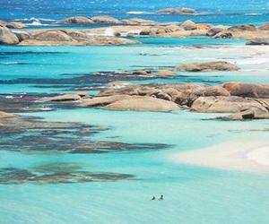 australia, beach, and photography image