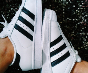 adidas, shoes, and adidas superstar image