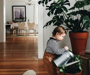 baby, home, and plants image