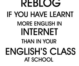 english, text, and internet image