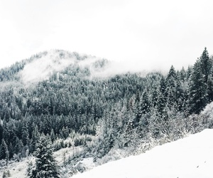 snow, vinter, and winter image