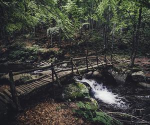 nature, landscape, and beautiful image