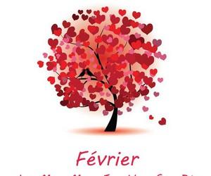 2016 and fevrier image