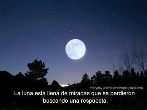 Image About Moon In Frases By Estela On We Heart It