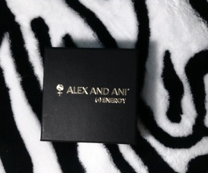 black, alex and ani, and box image