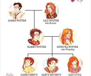 harrypotter and potterfamily image