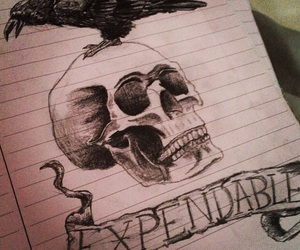 drawing, expendables, and theexpendables image