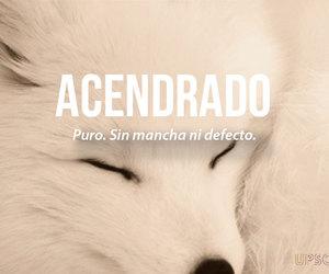 words, acendrado, and puro image