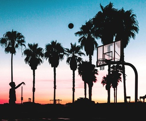 Basketball, sunset, and palms image