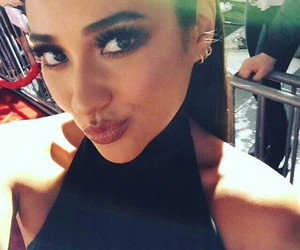 pca, pll, and shay mitchell image
