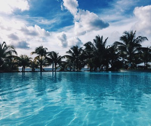 mauritius, palm tree, and pool image