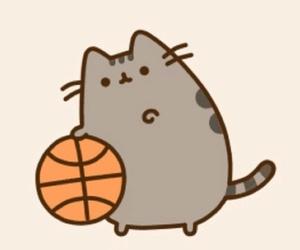 Basketball, cat, and pusheen image